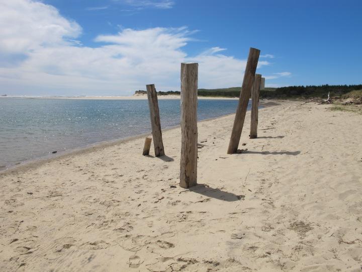 Küstenflair – Unterwegs auf Highway101
